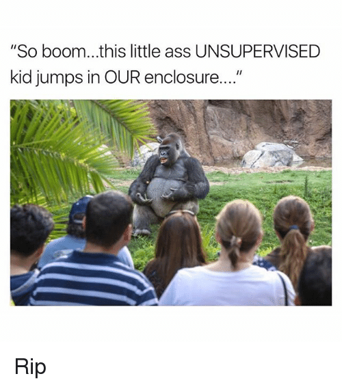 "Ass, Funny, and Boom: ""So boom...this little ass UNSUPERVISED  kid jumps in OUR enclosure...."" Rip"