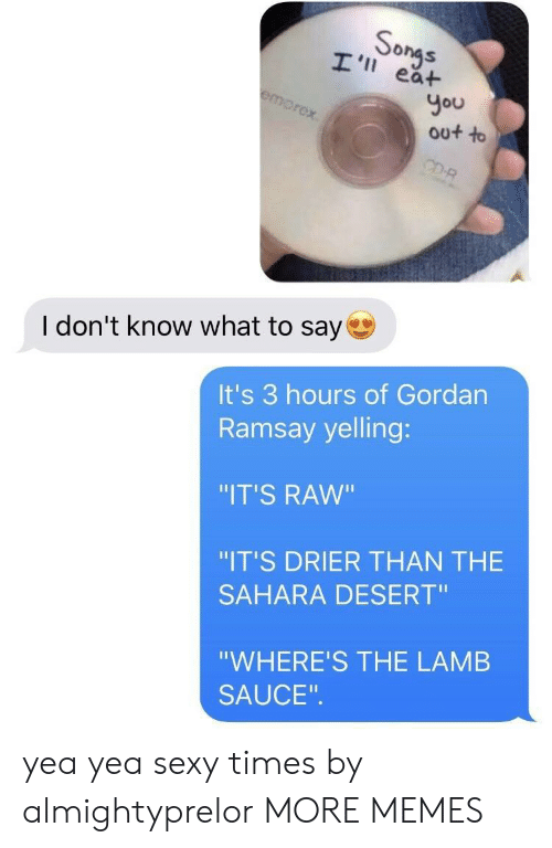 """Lamb Sauce: So  ea+  You  out to  I don't know what to say  It's 3 hours of Gordan  Ramsay yelling:  """"IT'S RAW""""  """"IT'S DRIER THAN THE  SAHARA DESERT""""  """"WHERE'S THE LAMB  SAUCE yea yea sexy times by almightyprelor MORE MEMES"""