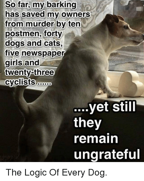 Dogs: So  far,  my  barking  has saved myv owners  from murder by ten  postmen, forty  dogs and cats,  five newspaper  girls and  twenty-three  yet Still  they  remain  ungrateful <p>The Logic Of Every Dog.</p>