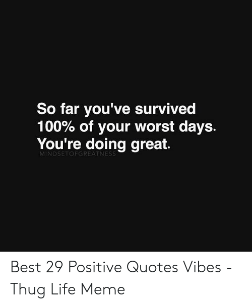 Be Positive Meme: So far you've survived  100% of your worst days.  You're doing great.  MINDSETOFGREATNESS Best 29 Positive Quotes Vibes - Thug Life Meme