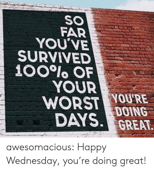 happy wednesday: SO  FAR  YOU'VE  SURVIVED  100lo OF  YOUR  WORST YOU'RE  DAYS DOING  GREAT awesomacious:  Happy Wednesday, you're doing great!