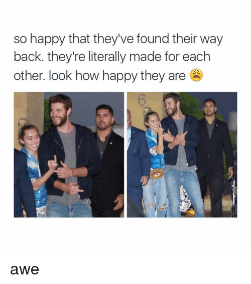 Happy, Girl Memes, and Happiness: so happy that they've found their way  back. they're literally made for each  other. look how happy they are awe