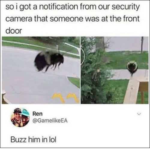 security camera: so i got a notification from our security  camera that someone was at the front  door  Ren  @GamelikeEA  Buzz him in lol