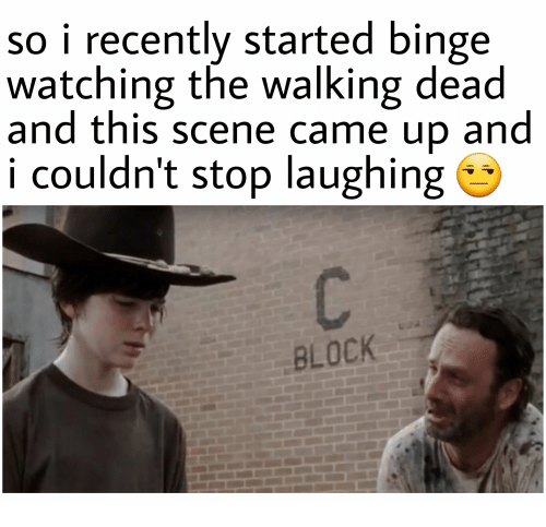 The Walking Dead, Walking Dead, and Scene: so i recently started binge  watching the walking dead  and this scene came up and  i couldn't stop laughing  BLOCK