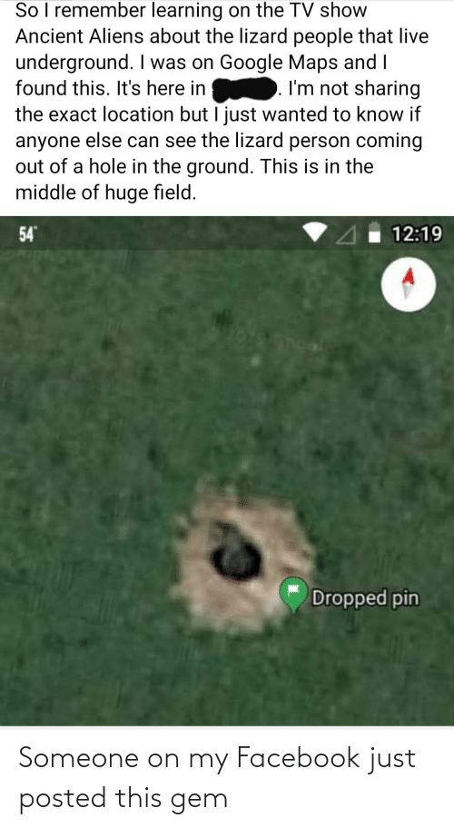 Ancient Aliens: So I remember learning on the TV show  Ancient Aliens about the lizard people that live  underground. I was on Google Maps and I  I'm not sharing  found this. It's here in  the exact location but I just wanted to know if  anyone else can see the lizard person coming  out of a hole in the ground. This is in the  middle of huge field.  54  12:19  Dropped pin Someone on my Facebook just posted this gem
