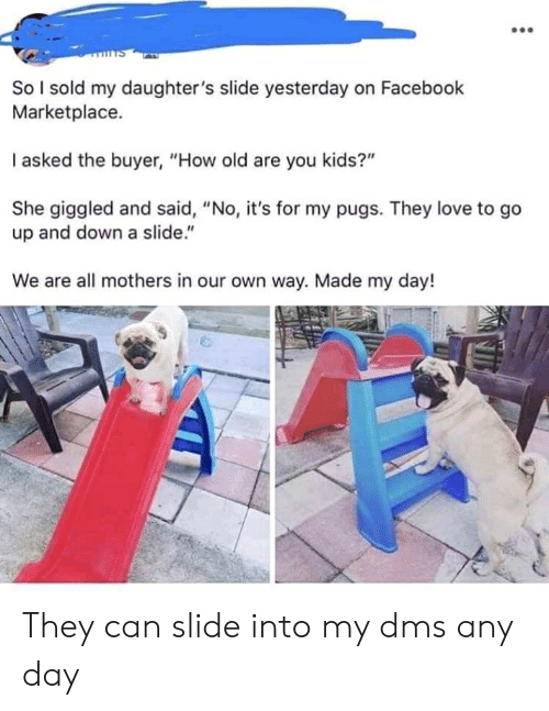 "Slide Into My Dms: So I sold my daughter's slide yesterday on Facebook  Marketplace.  I asked the buyer, ""How old are you kids?""  She giggled and said, ""No, it's for my pugs. They love to go  up and down a slide.""  We are all mothers in our own way. Made my day! They can slide into my dms any day"
