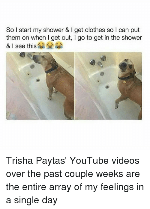My Feels: So I start my shower & l get clothes so l can put  them on when I get out, l go to get in the shower  & I see this Trisha Paytas' YouTube videos over the past couple weeks are the entire array of my feelings in a single day