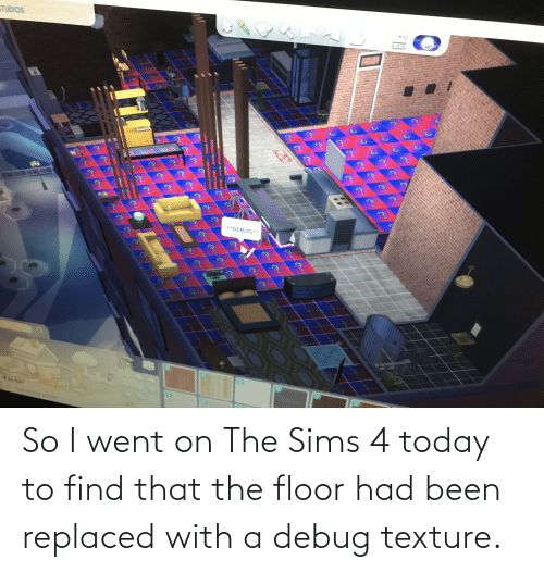 texture: So I went on The Sims 4 today to find that the floor had been replaced with a debug texture.