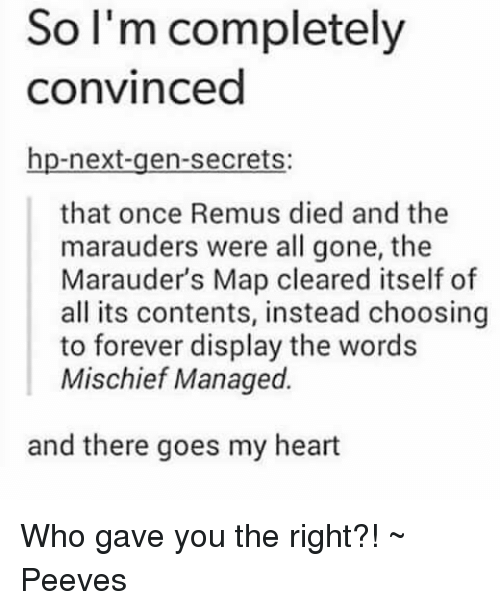 Memes, Maps, and Marauding: So I'm completely convinced hp-next-gen ...