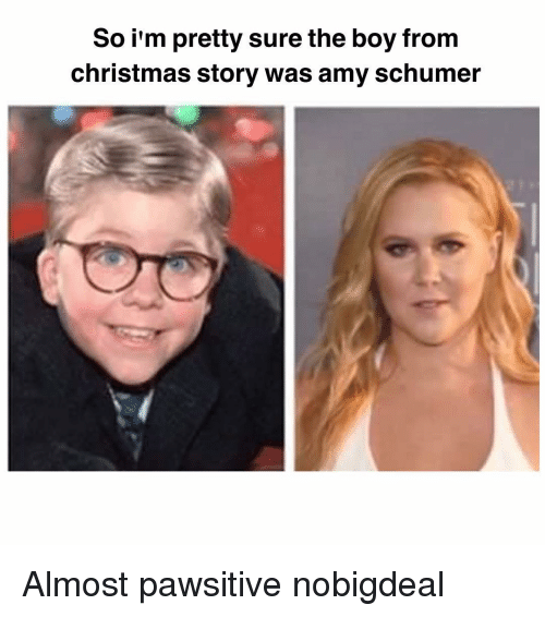 Amy Schumer, Memes, and 🤖: So i'm pretty sure the boy from  christmas story was amy schumer Almost pawsitive nobigdeal