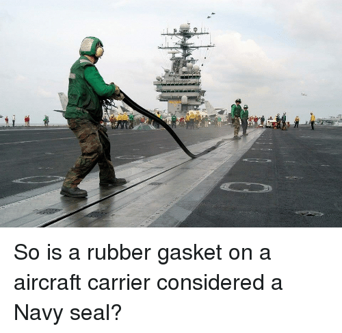 navy seal: So is a rubber gasket on a aircraft carrier considered a Navy seal?