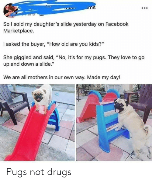 """Pugs: So l sold my daughter's slide yesterday on Facebook  Marketplace.  I asked the buyer, """"How old are you kids?""""  She giggled and said, """"No, it's for my pugs. They love to go  up and down a slide.""""  We are all mothers in our own way. Made my day! Pugs not drugs"""