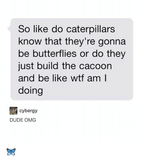 Be Like, Dude, and Memes: So like do caterpillars  know that they're gonna  be butterflies or do they  just build the cacoon  and be like wtf am l  doing  cybergy  DUDE OMG 🦋