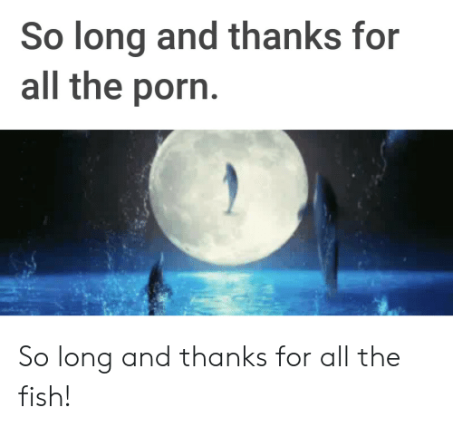 Thanks For All The Fish: So long and thanks for  all the porn So long and thanks for all the fish!