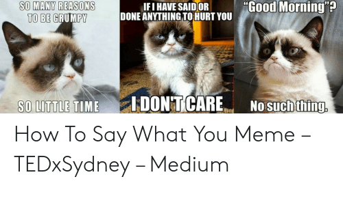 "Say What Meme: SO MANY REASONS  TO BE GRUMPY  IF I HAVE SAID(OR  DONE ANYTHING TOHURT YOU  .""Go  such thing, How To Say What You Meme – TEDxSydney – Medium"