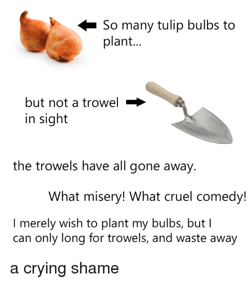 Crying, Dank, and Comedy: So many tulip bulbs to  plant  but not a trowel  in sight  the trowels have all gone away  What misery! What cruel comedy!  I merely wish to plant my bulbs, but I  can only long for trowels, and waste away a crying shame