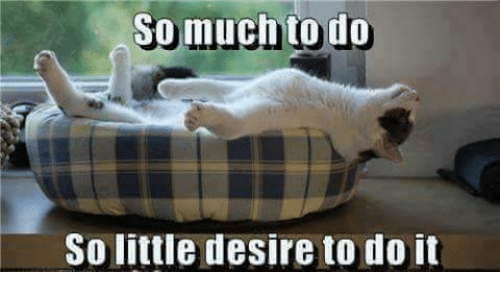 So Much To Do So Little Desire To Do It: So much to do  So little desire to do it