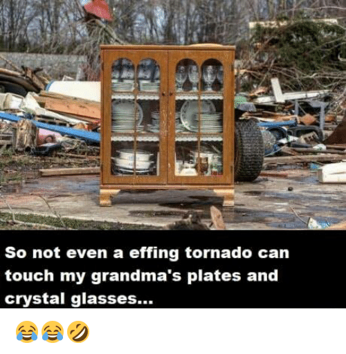 Dank, Glasses, and Tornado: So not even a effing tornado can  touch my grandma's plates and  crystal glasses... 😂😂🤣
