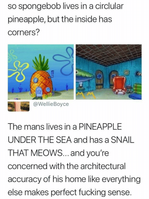 accuracy: so spongebob lives in a circlular  pineapple, but the inside has  corners?  tA #  @WellieBoyce  The mans lives in a PINEAPPLE  UNDER THE SEA and has a SNAIL  THAT MEOWS... .and you're  concerned with the architectural  accuracy of his home like everything  else makes perfect fucking sense.