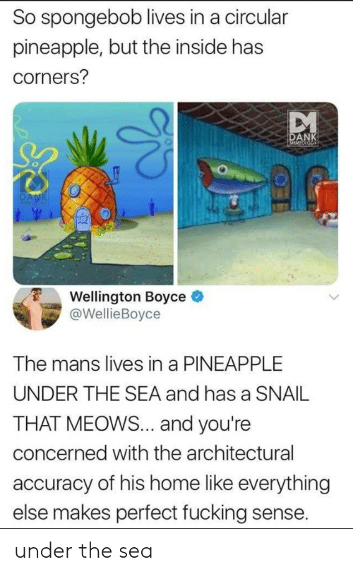 accuracy: So spongebob lives in a circular  pineapple, but the inside has  corners?  DANK  Wellington Boyce e  @WellieBoyce  The mans lives in a PINEAPPLE  UNDER THE SEA and has a SNAIL  THAT MEOWS... and you're  concerned with the architectural  accuracy of his home like everything  else makes perfect fucking sense. under the sea