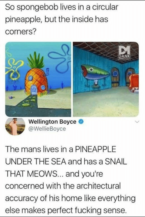Dank, SpongeBob, and Home: So spongebob lives in a circular  pineapple, but the inside has  corners?  AN  Wellington Boyce  @WellieBoyce  The mans lives in a PINEAPPLE  UNDER THE SEA and has a SNAIL  THAT MEOWS... and you're  concerned with the architectural  accuracy of his home like everything  else makes perfect fucking sense.