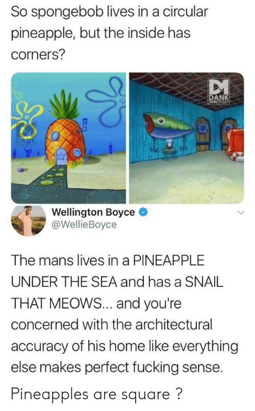 accuracy: So spongebob lives in a circular  pineapple, but the inside has  corners?  DANK  MEMEOLOGY  DANK  MEMICIOG  Wellington Boyce  @WellieBoyce  The mans lives in a PINEAPPLE  UNDER THE SEA and has a SNAIL  THAT MEOWS... and you're  concerned with the architectural  accuracy of his home like everything  else makes perfect fucking sense. Pineapples are square ?