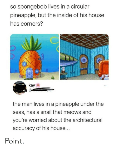 accuracy: so spongebob lives in a circular  pineapple, but the inside of his house  has corners?  kay  the man lives in a pineapple under the  seas, has a snail that meows and  you're worried about the architectural  accuracy of his house... Point.