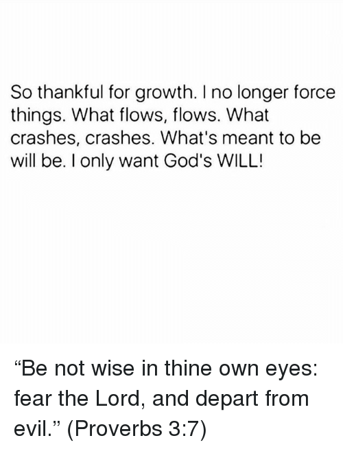 "departed: So thankful for growth. I no longer force  things. What flows, flows. What  crashes, crashes. What's meant to be  will be. I only want God's WILL! ""Be not wise in thine own eyes: fear the Lord, and depart from evil."" (Proverbs‬ ‭3:7‬)"