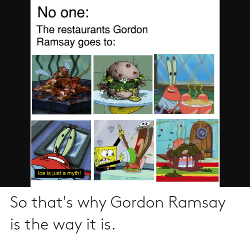 Gordon Ramsay: So that's why Gordon Ramsay is the way it is.