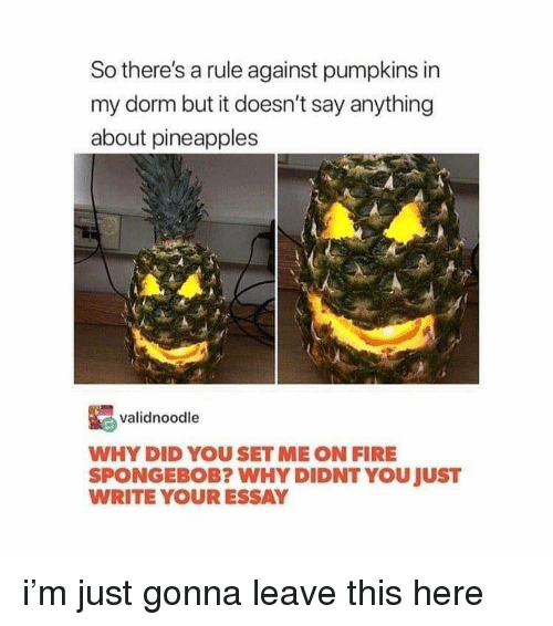 dorm: So there's a rule against pumpkins in  my dorm but it doesn't say anything  about pineapples  validnoodle  WHY DID YOU SET ME ON FIRE  SPONGEBOB? WHY DIDNT YOU JUST  WRITE YOUR ESSAY i'm just gonna leave this here