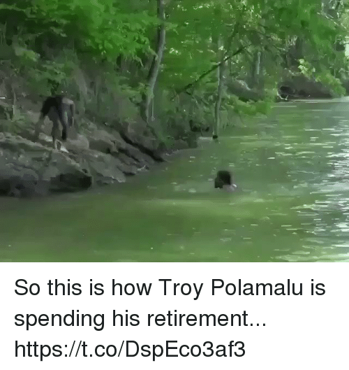 Football, Nfl, and Sports: So this is how Troy Polamalu is spending his retirement... https://t.co/DspEco3af3