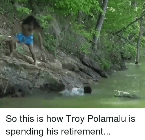 troy polamalu: So this is how Troy Polamalu is spending his retirement...