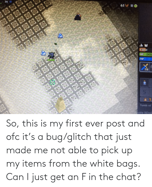 bags: So, this is my first ever post and ofc it's a bug/glitch that just made me not able to pick up my items from the white bags. Can I just get an F in the chat?