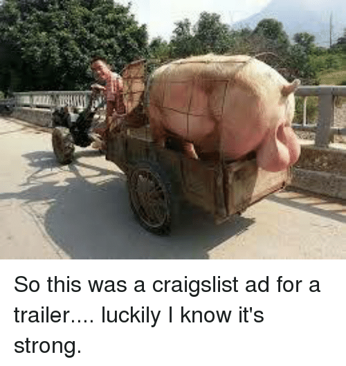 So This Was a Craigslist Ad for a Trailer Luckily I Know ...