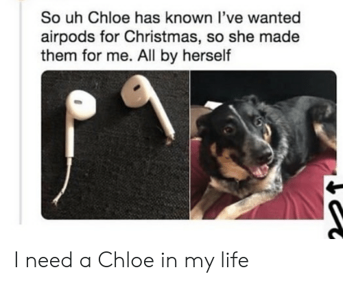 Airpods: So uh Chloe has known l've wanted  airpods for Christmas, so she made  them for me. All by herself I need a Chloe in my life