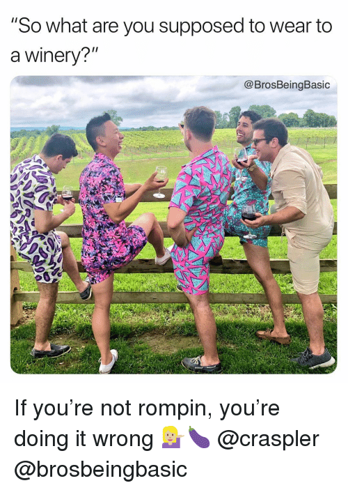 """Doing It Wrong: """"So what are you supposed to wear to  a winery?""""  @BrosBeingBasic If you're not rompin, you're doing it wrong 💁🏼🍆 @craspler @brosbeingbasic"""