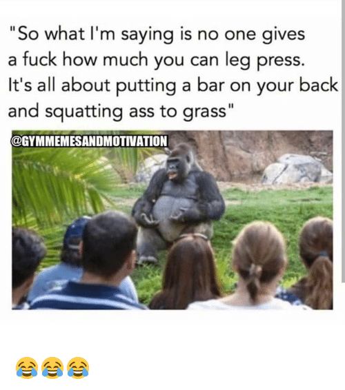 """Ass, Gym, and Fuck: """"So what I'm saying is no one gi  a fuck how much you can leg press.  It's all about putting a bar on your back  and squatting ass to grass""""  @GYMMEMESANDMOTIVATION  ves 😂😂😂"""
