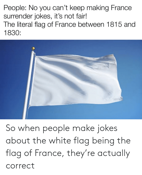 Correct: So when people make jokes about the white flag being the flag of France, they're actually correct