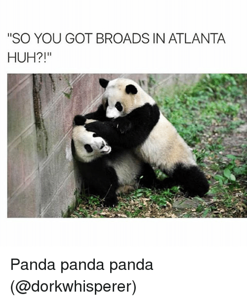 "Huh, Panda, and Girl Memes: ""SO YOU GOT BROADS IN ATLANTA  HUH?!"" Panda panda panda (@dorkwhisperer)"