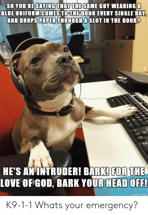 So You Re: SO YOU RE SAING THAT THE SAME  BLUE UNIFORMICOMES TOTHE DOOR EVERY SINGLE DAY  AND DROPS PAPER THROUGH A SLOT IN THE DOOR?  HE'S AN INTRUDER! BARK! FOR THE  LOVE OF GOD, BARK YOUR HEAD OFF!  made on imaur K9-1-1 Whats your emergency?