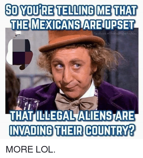 So You Re: SO YOU RE TELLING ME THAT  THE MEXICANS ARE UPSET  acebook oTheRedRightAndYou  THAT ILLEGAL ALIENSTARE  NVADING THEIR COUNTRY? MORE LOL.