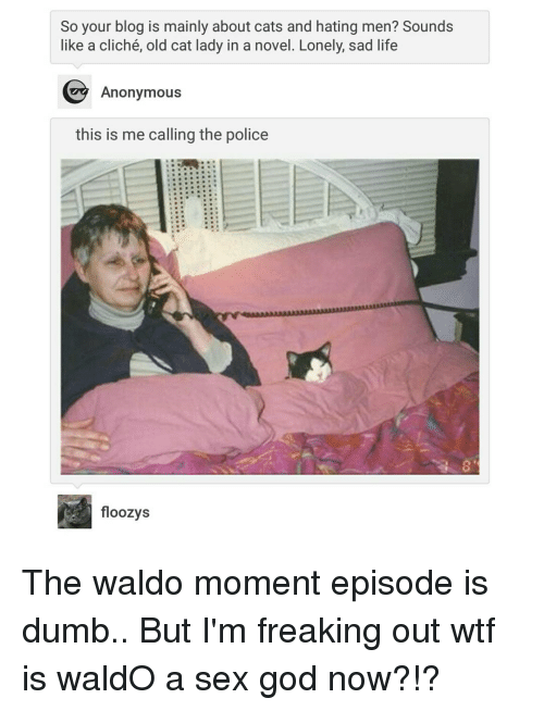 freaking out: So your blog is mainly about cats and hating men? Sounds  like a cliché, old cat lady in a novel. Lonely, sad life  Anonymous  this is me calling the police  floozys The waldo moment episode is dumb.. But I'm freaking out wtf is waldO a sex god now?!?