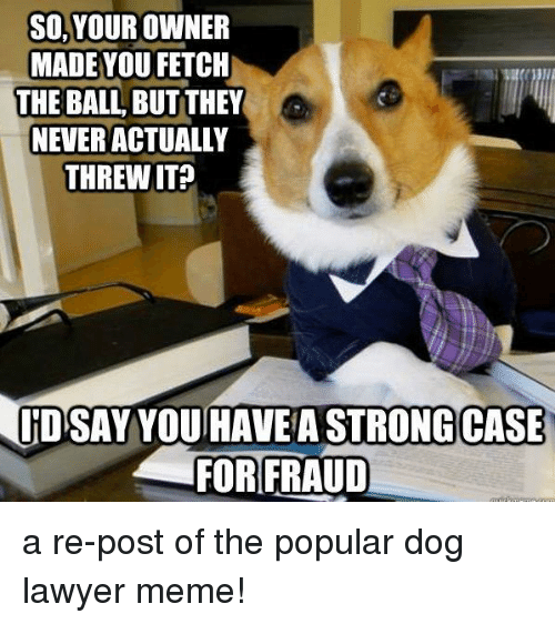 Lawyer Meme: SO, YOUR OWNER  MADE YOU FETCH  THE BALL BUT THEY  NEVER ACTUALLY  THREW IT?  ID SAY YOU HAVE A STRONG CASE  FOR FRAUD a re-post of the popular dog lawyer meme!