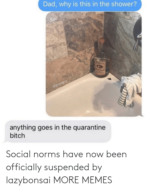 norms: Social norms have now been officially suspended by lazybonsai MORE MEMES
