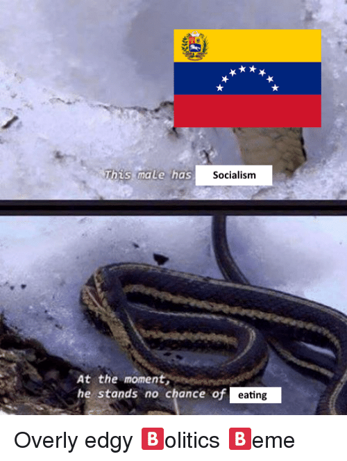 Socialism, Dank Memes, and Edgy: Socialism  At the moment  he stands no chance of  eating