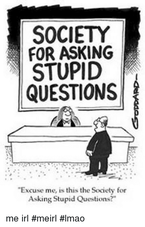 "stupid questions: SOCIETY  FOR ASKING  STUPID  QUESTIONS  Excuse me, is this the Society for  Asking Stupid Questions?"" me irl #meirl #lmao"