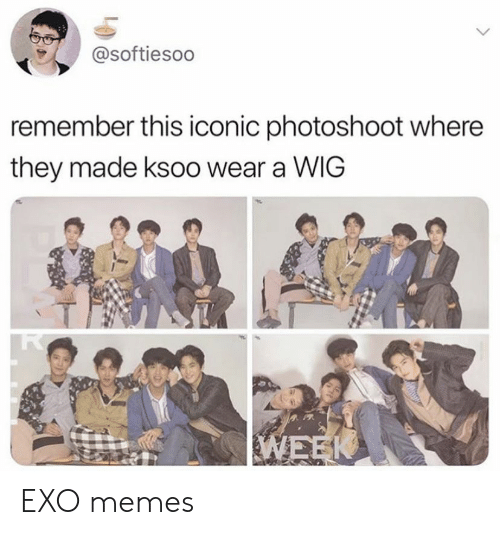 photoshoot: @softiesoo  remember this iconic photoshoot where  they made ksoo wear a WIG EXO memes