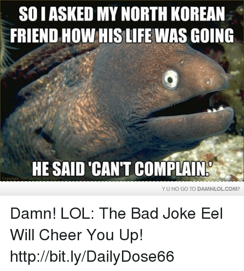 bad joke eel: SOIASKED MY NORTH KOREAN  FRIEND HOW HIS LIFE WAS GOING  HE SAID CAN'T COMPLAIN  YU NO GO TO DAMNLOL COM? Damn! LOL: The Bad Joke Eel Will Cheer You Up!