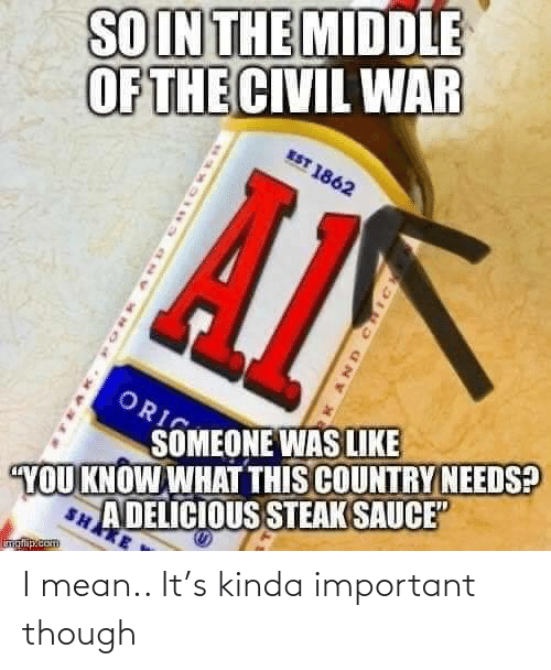 "Civil War: SOIN THE MIDDLE  OF THE CIVIL WAR  EST 1862  ORI  SOMEONE WAS LIKE  A DELICIOUS STEAK SAUCE""  SHAKE  YOU KNOW WHAT THIS COUNTRY NEEDS?  inglip.com  AND CHIC I mean.. It's kinda important though"