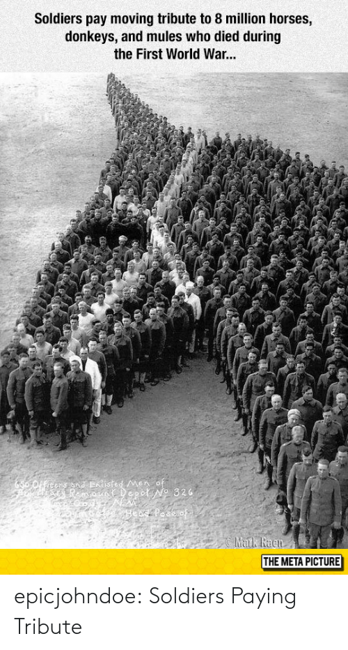 Tribute: Soldiers pay moving tribute to 8 million horses,  donkeys, and mules who died during  the First World War...  THE META PICTURE epicjohndoe:  Soldiers Paying Tribute